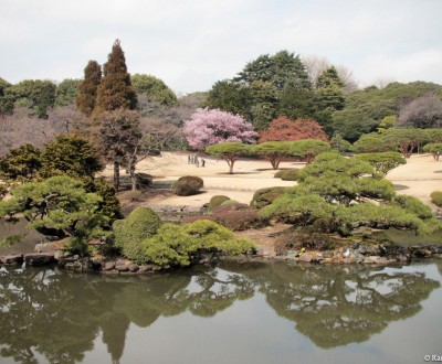 Shinjuku Gyoen (Tokyo), View on the Japanese garden at the end of winter