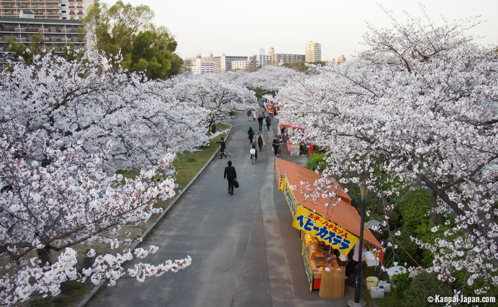 Resultado de imagem para kema sakuranomiya park osaka