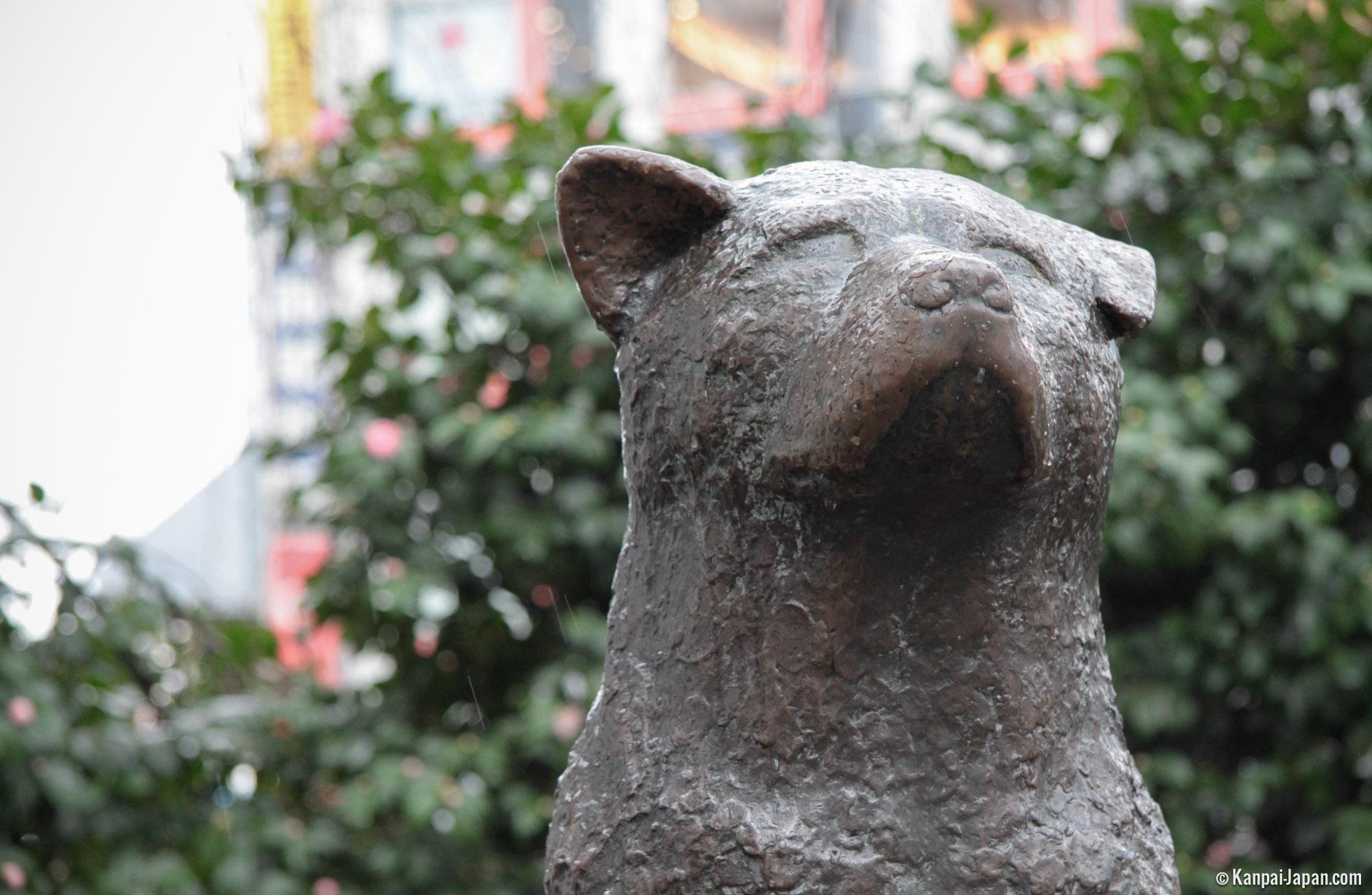 Hachiko - The Statue of Shibuya's Faithful Dog