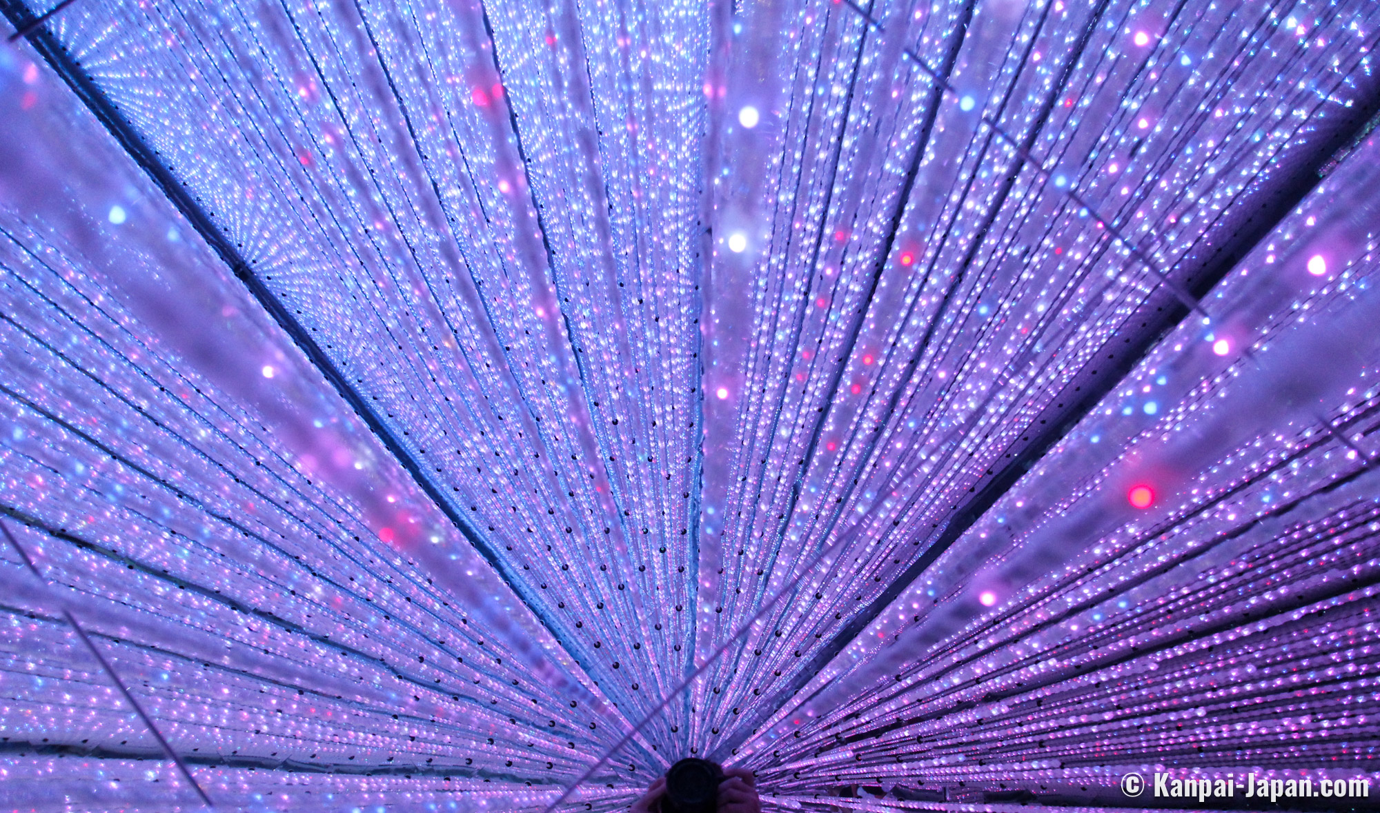 Teamlab Planets The Excellent Teamlab Bordeless Temporary Exhibition